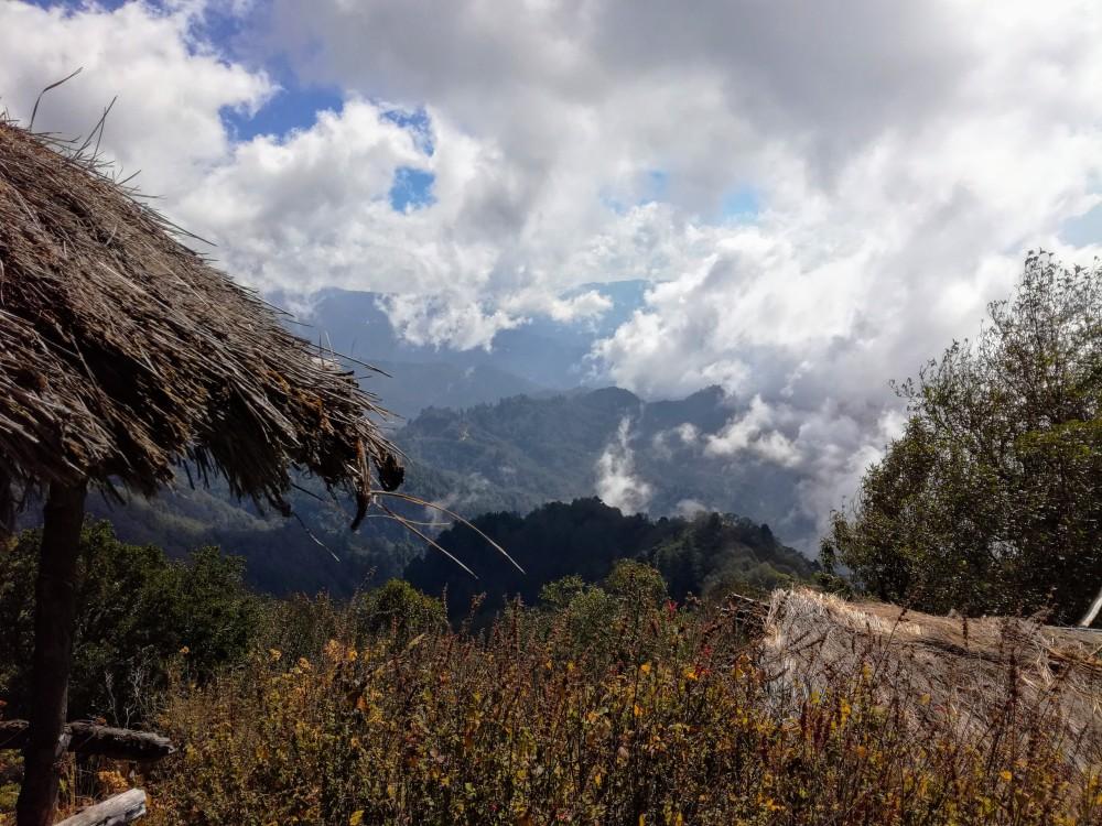 Sur les pans du Tacana, on passe de la selva aux alpages en altitude (Photo FC)