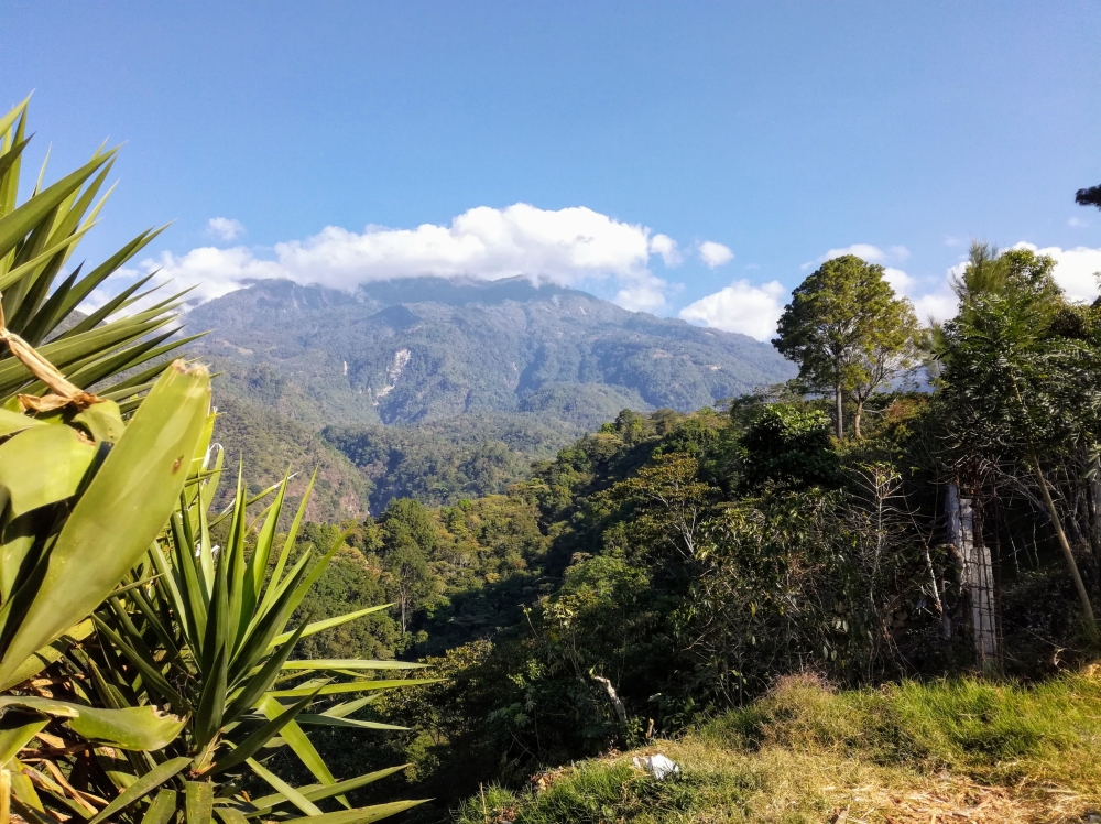 Le Tacana, de Union Juarez, au coeur de la Selva ((Photo FC)
