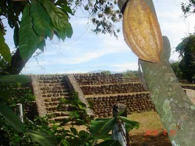Le site mixe-zoque d'Izapa sur la route de Tapachula au volcan de Tacana est une ode au cacao.