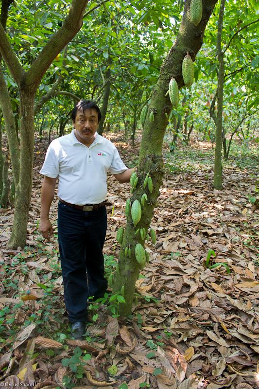 Son fils, David est aujourd'hui Président de l'Association des producteurs de cacao du Soconusco (© Tomàs Abella)