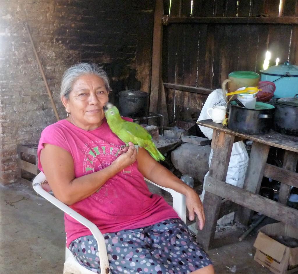 La dame au perroquet dans la Communauté Francisco Sarabia, l'oiseau domestique le plus répandu dans le Mexique traditionnel (Photo FC)