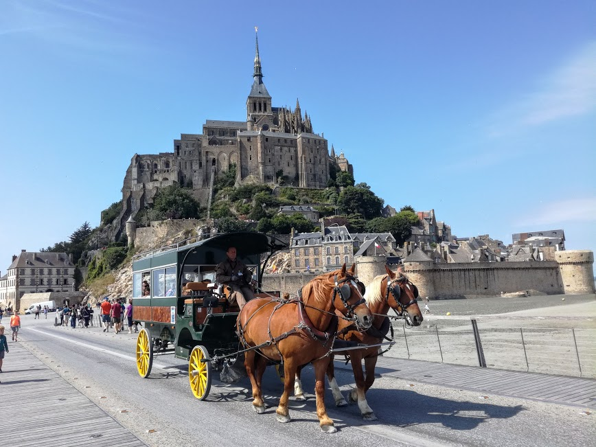 Deux cobs normands, Artiste et Prince, tirant une carriole sur le pont-passerelle du Mont-Saint-Michel ; le souvenir de ces maringottes attelées qui, à la fin du XIXe siècle, assuraient sur la grève, la liaison vers le Mont-Saint-Michel à partir de Genêts (Photo FC)