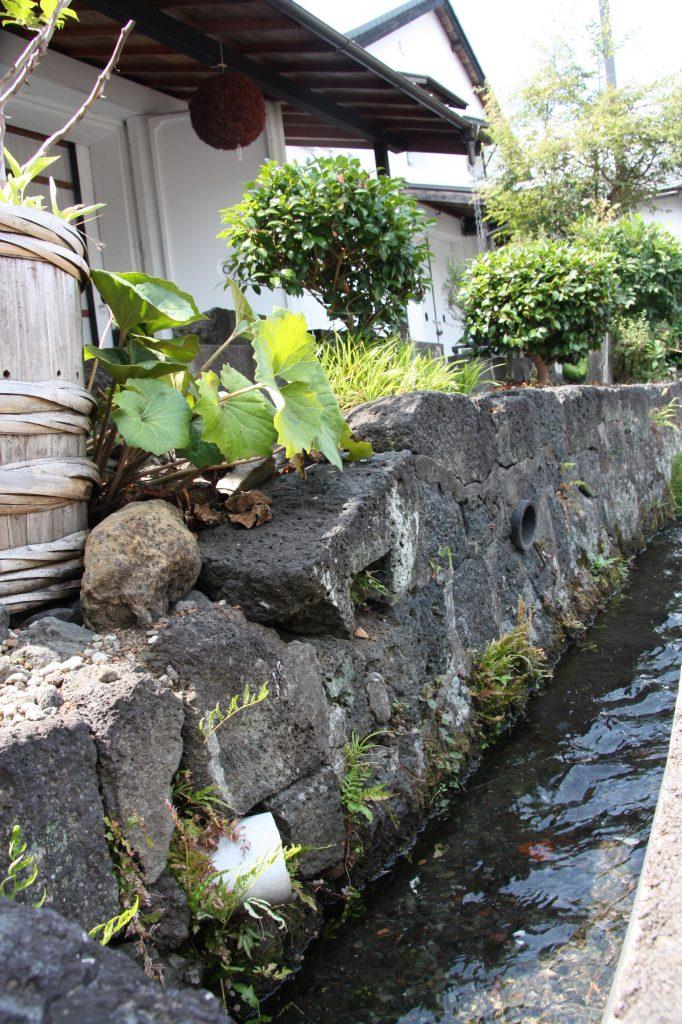 La brasserie Fuji Takasago est située au pied du célèbre Mont Fuji. Depuis 1831, elle utilise les eaux souterraines limpides et pures du mont Fuji. Cent ans environ sont nécessaire pour la filtrer à travers nombre de couches géologiques, ce qui la rend extrêmement douce. Sa température à la source est de 5°, idéale pour la production de saké. La variété de riz utilisée est locale (yamadanishiki). Fuji Takasago est réputée pour son Junmai Daiginjo (polissage 35 %, titrant 15°). Photo DR
