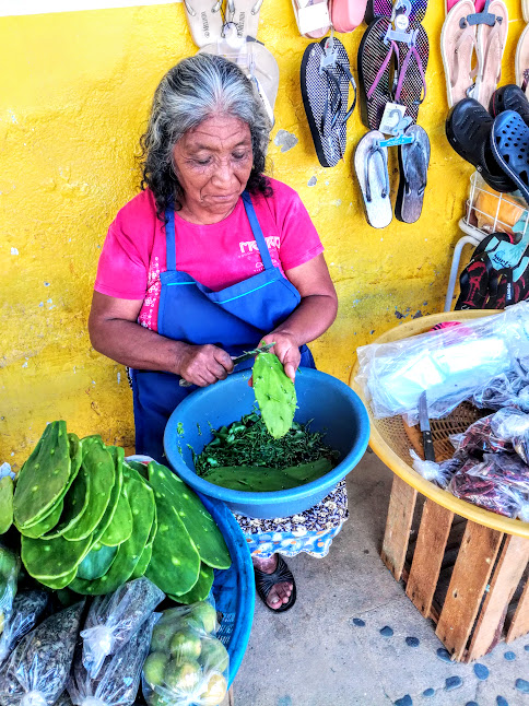 Market day in Pochutla, Oaxaca where a lady from the Sierra Madre sit preparing nopal leaves ready to be cooked.