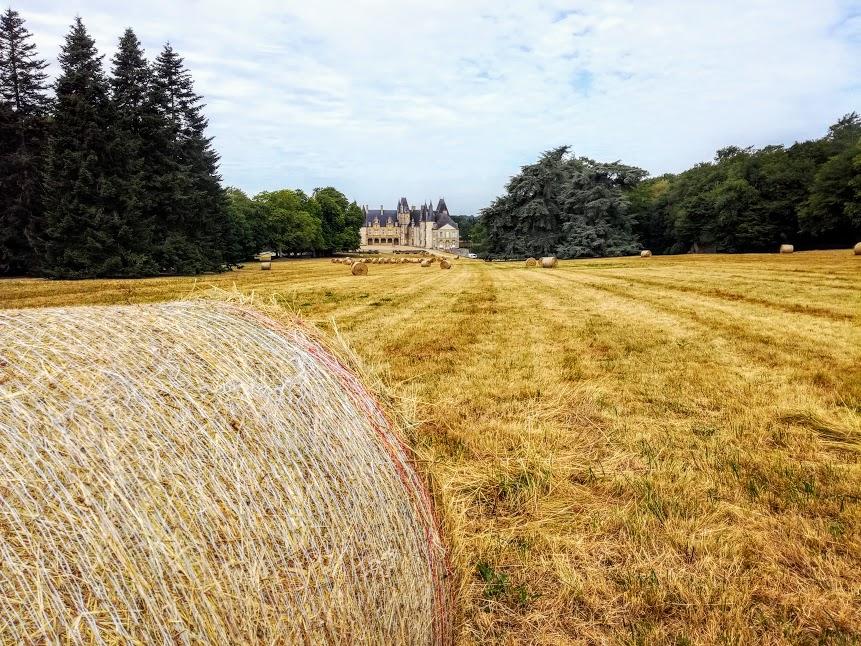 Le château du Rocher construit au XIIIe siècle à Mézangers est sans doute l'un des plus beaux de Mayenne.  Il était son nom granulaire du Massif armoricain.  Ses propriétaires successifs ont modifié cette ancienne forteresse médiévale en construisant au XVIe siècle, une chapelle et une galerie de style Renaissance (Photo FC)