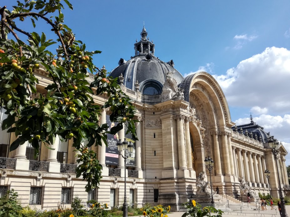 Paris summer times Petit Palais et son pommier (Photo FC)