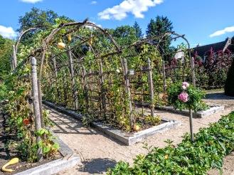 Chenonceau jardin potager courges (Photo FC)