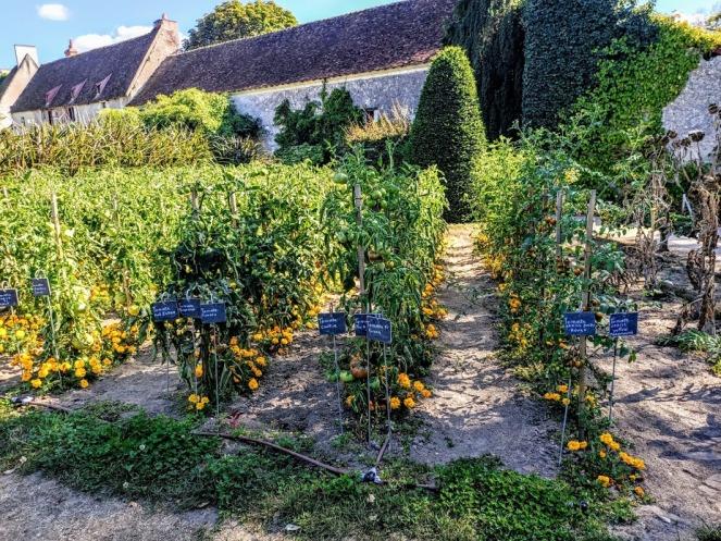 Chenonceau potager (Photo FC)