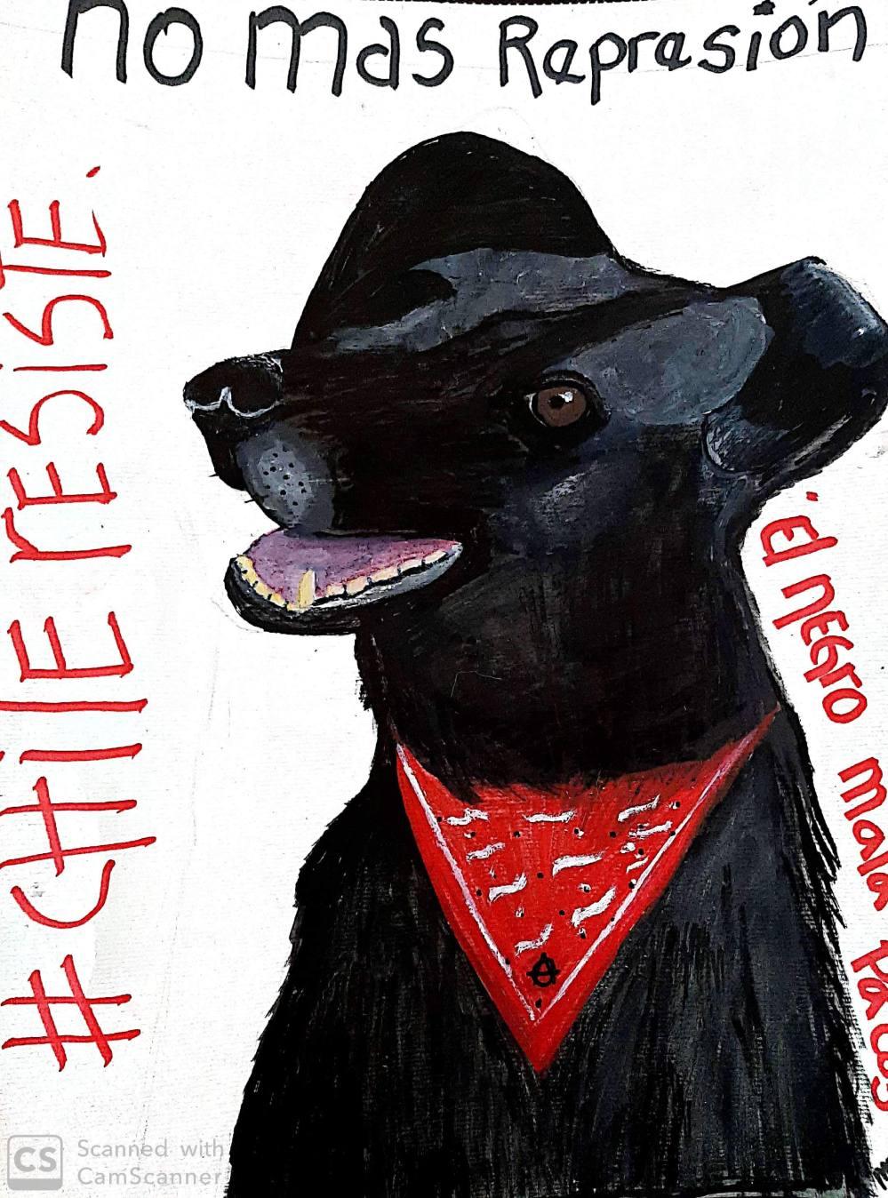 Le chien El Negro Matapacos est devenu l'icône des révolutions et des révoltes dans le monde.