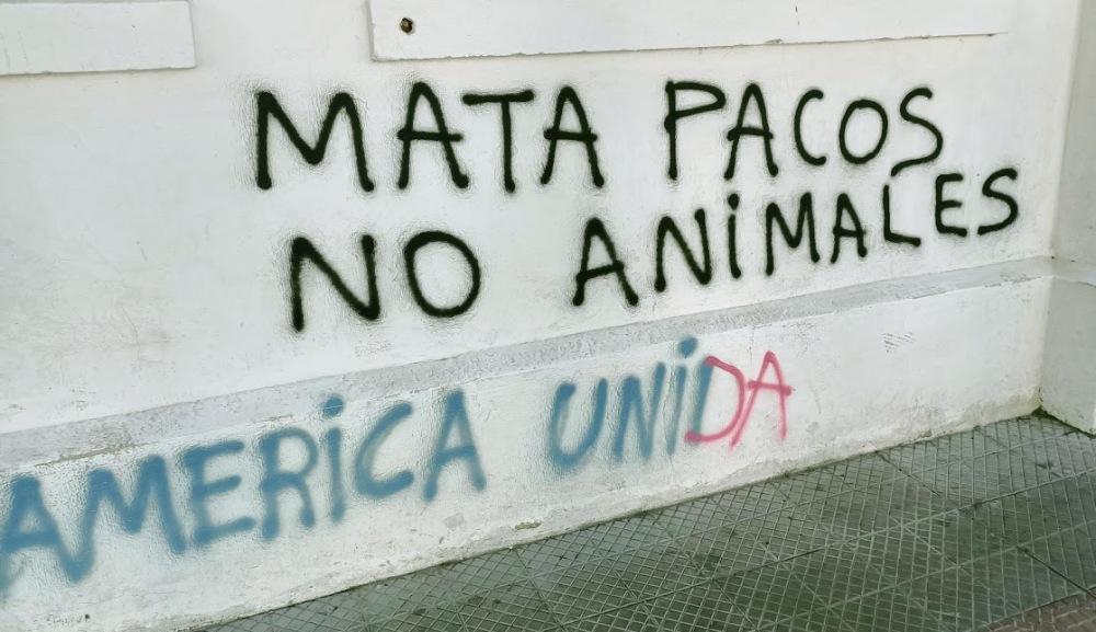 Mata pacos, pintado sobre las paredes de la Universidad Academia de Humanismo Cristiano cerca del barrio Italia (foto FC)